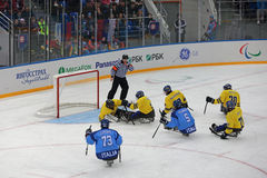 Хоккей розвальней Стоковая Фотография