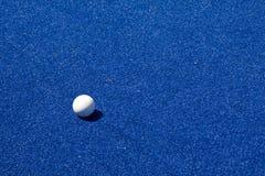 хоккей шарика Стоковые Фотографии RF