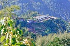 Холмистое террасное поле Стоковое Фото