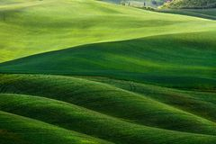 холмистый ландшафт Тоскана Стоковая Фотография RF
