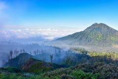 Холмы видят вне от туманного стоковая фотография