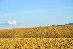 Холмы желтый цвет и небесно-голубое Стоковая Фотография