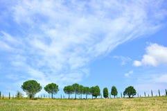 холмы Италия Тоскана Стоковая Фотография