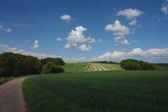 холмы мирные Стоковое Изображение RF
