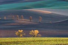 Холмы осени Моравии стоковые изображения