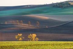 Холмы осени Моравии стоковая фотография