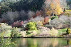 холмы осени adelaide стоковая фотография