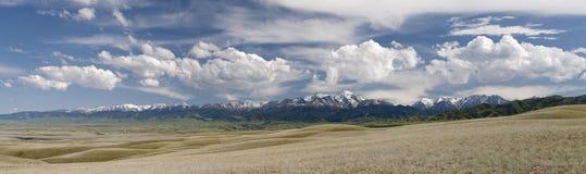 холмы предгорья Стоковая Фотография RF