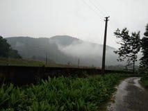 Холмы природы Стоковые Фото