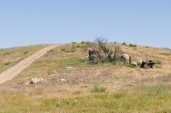 холмы Стоковые Фотографии RF