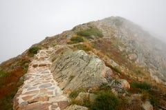 холмы Стоковое Изображение