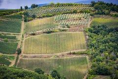 Холмы Chianti с виноградниками Тосканский ландшафт между Сиеной и Флоренсом Италия Стоковые Фото
