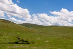 Холмы Condon стоковое изображение