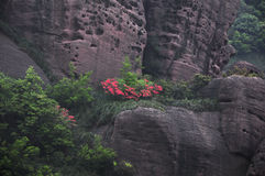 Холмы Guifeng Стоковые Фото