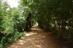 Холмы Horsley, Андхра-Прадеш, Индия Стоковые Фото