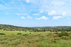 Холмы Judean около Beit Shemesh стоковые изображения