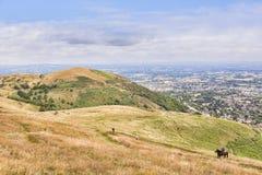 Холмы Malvern, Великобритания стоковые изображения