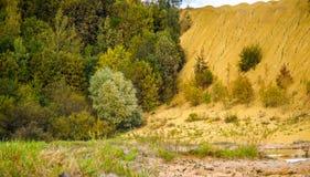 Холмы Sandy Озеро в каньоне Sandy предпосылка одевает цветы сложила желтый цвет померанцового красного цвета теплый Желтый песчан стоковые изображения rf