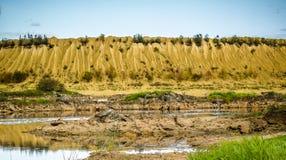 Холмы Sandy Озеро в каньоне Sandy предпосылка одевает цветы сложила желтый цвет померанцового красного цвета теплый Желтый песчан стоковые фото