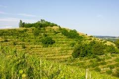 Холм в северной Хорватии Стоковые Изображения