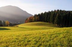Холм и зеленый ландшафт двора Стоковые Изображения RF