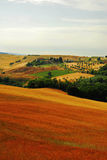 Холм Тосканы Стоковые Фото