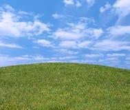 холм травы Стоковые Изображения