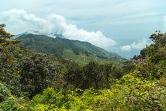 Холм Цейлон горы, Азия стоковые изображения rf