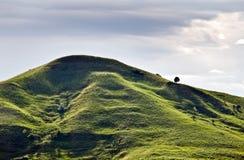 холм стоковое изображение