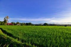 Холм Takuruang большинств красивые места, который нужно посетить в Индонезии стоковое изображение rf