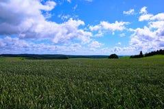 Холм Witthoh в Германии Стоковые Фото