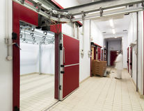 холодильники нося мяса человека залемей Стоковое фото RF
