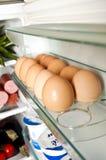 холодильник Стоковые Изображения