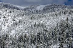 Холодная гора стоковая фотография