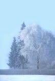 холодная зима дня Стоковое фото RF