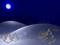 холодная зима ночи Иллюстрация штока