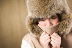 холодная зима Стоковое Изображение RF