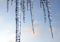 холодная зима icicles Стоковое Изображение RF