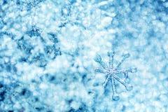 Холодная предпосылка яркого блеска зимы с снежинкой Стоковые Изображения
