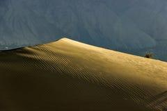 Холодная пустыня Стоковое фото RF