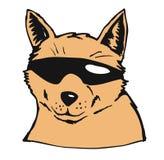 холодная собака Стоковая Фотография