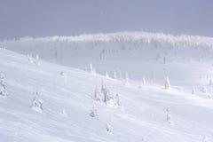 холодная сторона сиротливой горы Стоковое Изображение RF