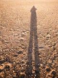 Холодная тень тени отражения силуэта в пляже песка мостить tex стоковая фотография