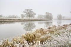 холодная туманнейшая зима утра Стоковое фото RF