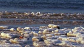 Холодное Балтийское море в зиме с ледистым пляжем видеоматериал