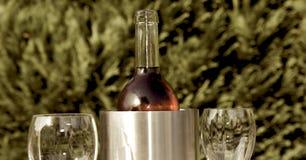 холодное вино лета Стоковые Фото