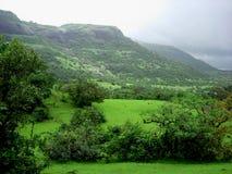 холодное greenscape Стоковые Изображения RF