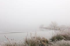 холодно Стоковое фото RF