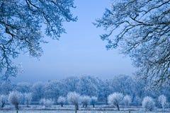 холодно Стоковое Изображение RF
