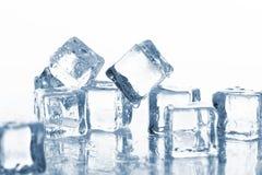 холодные кубики морозят влажную стоковое фото